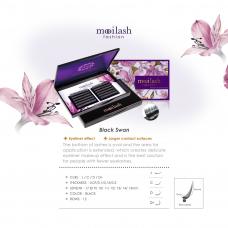 Mooilash Fashion - Black Swan / C CURL / 0.07MM