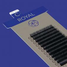 ROYAL / D+ CURL / 0.15MM