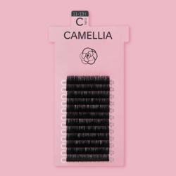 CAMELLIA BLACK / J CURL