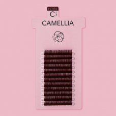 CAMELLIA BROWN / D CURL