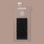 LASHiN / LD CURL